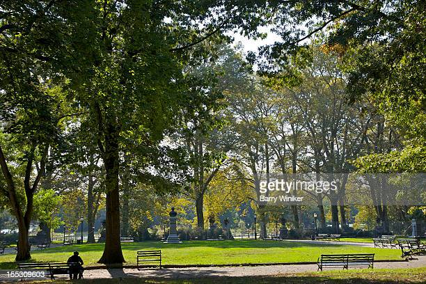 Lone man on bench amid trees in park.