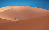 Lone man running in sand dunes