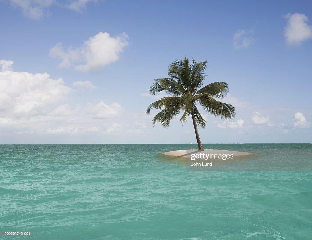 Definition Desert Island