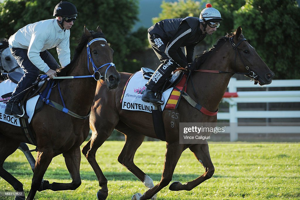 Lone Rock and Glen Boss riding Fontelina jump out of the gates in a barrier trial down the straight during a trackwork session at Flemington Racecourse on March 5, 2013 in Melbourne, Australia.
