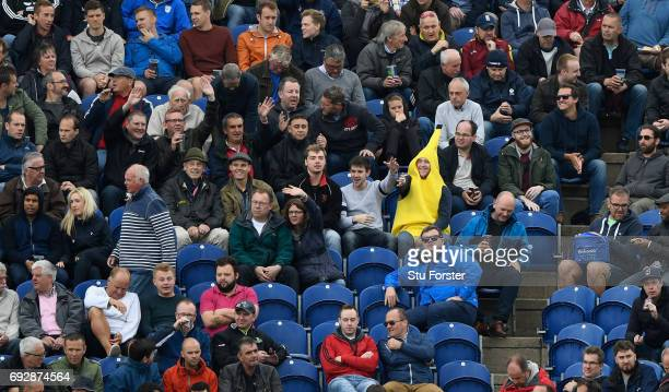 A lone spectator in fancy dress gets into the carnival Champions Trophy athmosphere during the ICC Champions Trophy match between England and New...