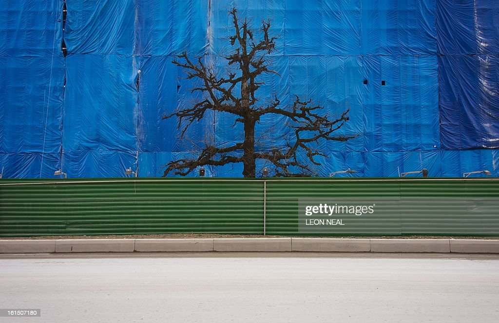 A lone tree rises between a well-used contruction track and the scaffolding cover of an uncompleted building Krasnaya Polyana a site of Sochi 2014 Olympic venues some 50 km of the Black Sea resort of Sochi, on February 11, 2013. With a year to go until the Sochi 2014 Winter Games, construction work continues as tests events and World Championship competitions are underway.