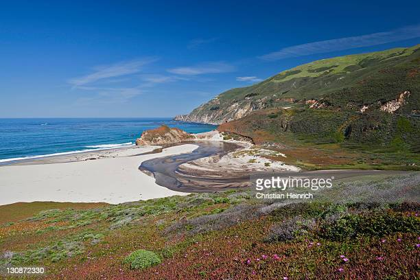 Lonely beach on the Pacific Ocean, Highway 1, California, USA