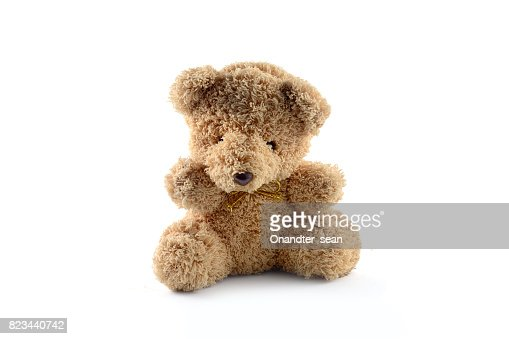 lonely bear doll isolate : Stock Photo