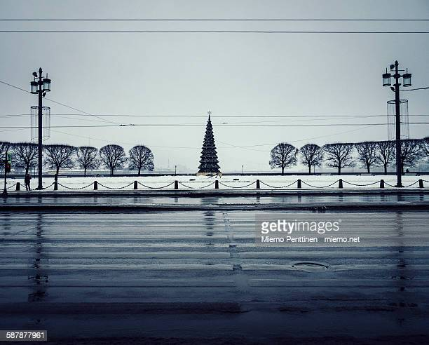 A lonely christmas tree in St. Petersburg