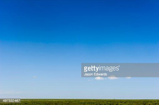 A lonely cloud dwarfed by a vast blue sky over the savannah grassland horizon.