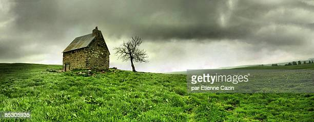 Lonely French House and Tree