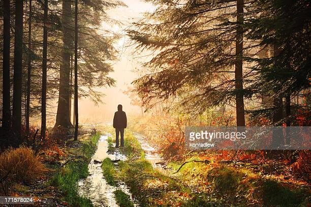 Lonely Man Standing on the Path - Foggy Autumn Forest