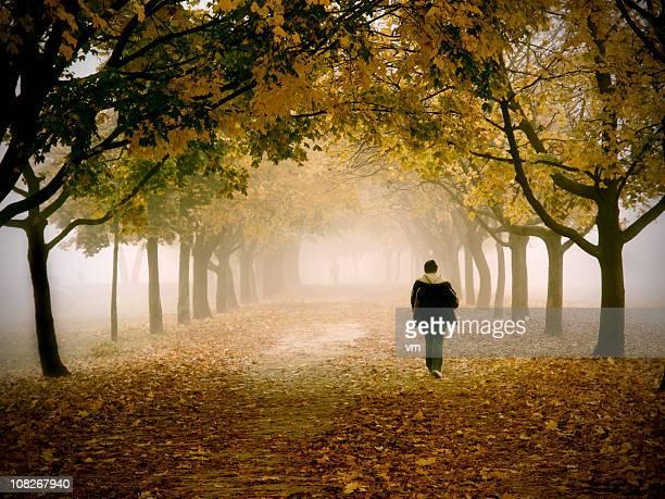 Lonely Mann zu Fuß in einem Park an einem nebligen Herbst Morgen