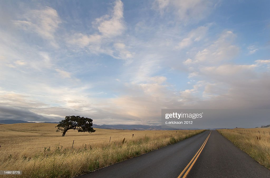 Lonely road : Stock Photo