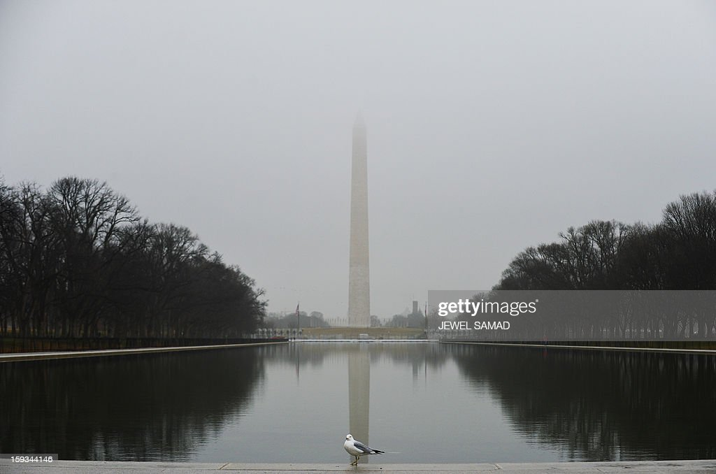 A lonely seagull rests as fog blanket Washington, DC, on January 12, 2013. The US capital is preparing for the second inauguration of US President Barack Obama, which will take place on January 21. AFP PHOTO/Jewel Samad