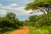 A typcial unpaved road in a rural part of Western Tanzania, close to the border to Burundi and the Democratic Republic of Congo.