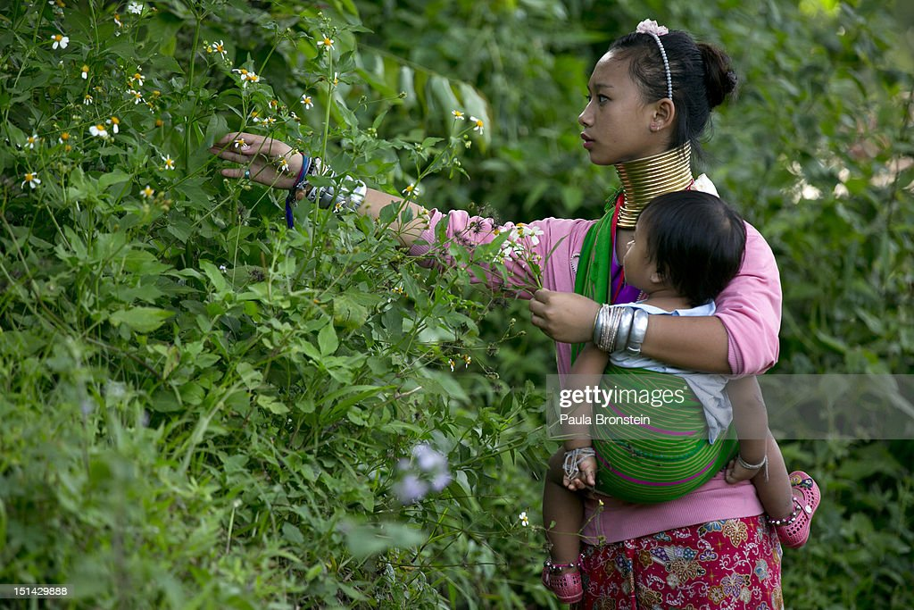 A Long Neck hill tribe mother carries her baby as she picks flowers at the Baan Tong Luang hill tribe village on September 6, 2012 in Maerim, Thailand. Baan Tong Luang is a fabricated village containing 6 separate Thai Hill Tribes where visitors are expected to pay $16 or 500 Thai bhat for the entrance fee. The ethnic tribes include the Lahu, Hmong, White Karen, Long necked Karen, Yao, Akha. The village opened since 2005 attempts to preserve the old traditions of the ethnic Hill Tribe, also providing an income for them. Life for many of Thailand's Hill Tribe population can be difficult since it can be hard for them to make a living. Their language, costume and culture are different along with the frequent legal problems over Thai citizenship. Hill tribe is a term used in Thailand for all of the various tribal peoples who migrated from Tibet, or elsewhere in China over the past few centuries.