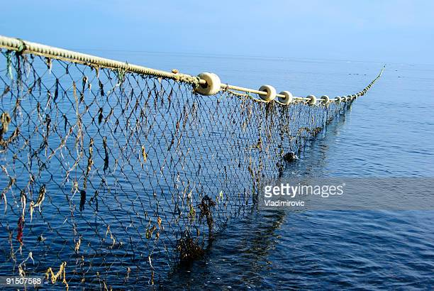 Long net going thought the ocean