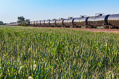 Long unit tank train with lush green corn field in foreground: diminishing perspective, concepts. ID and text removed