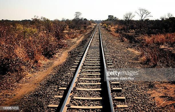 Long way to Livingstone