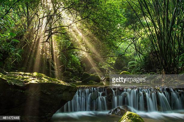 Longquan glamorous Creek