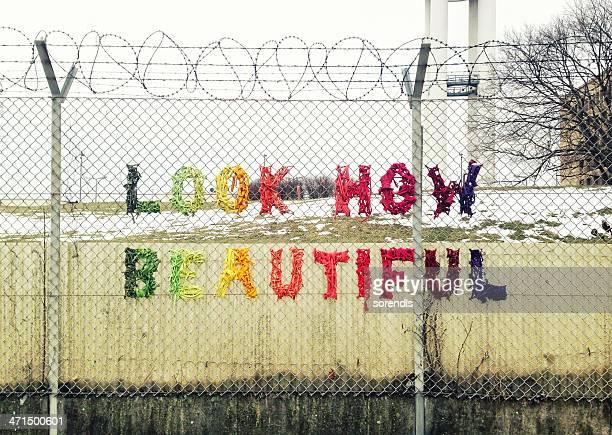 Visual como bela