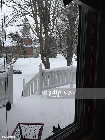 A look out the window this morning tells me that more snow is coming and spring is a long way off