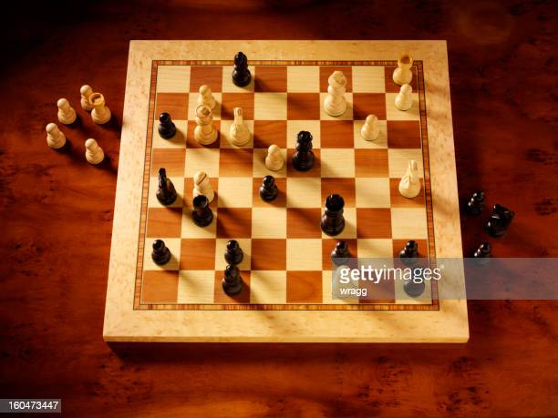 Looking at a Game of Chess