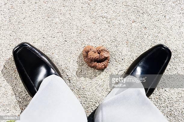 ふさぎこむでの犬の糞のコレクションで男性の足