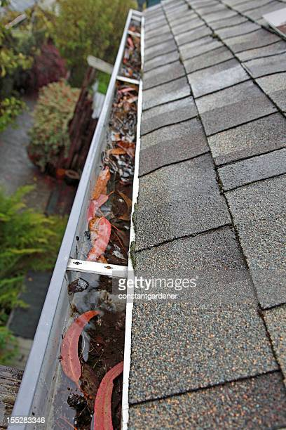 Looking Down Clogged Gutter