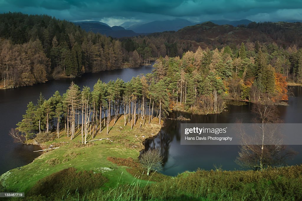Looking down on Tarn Hows in autumn : Stock Photo