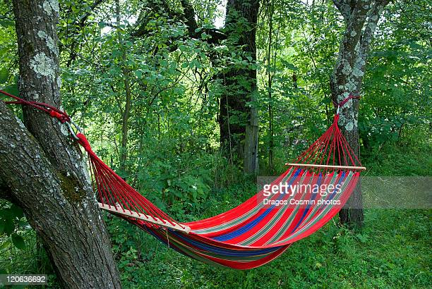 Looking for relaxing rope hammocks