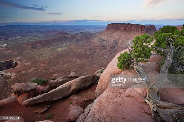 町並み砂漠のキャニオン