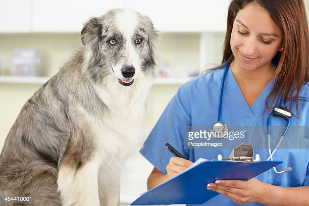 Looking over his medical chart