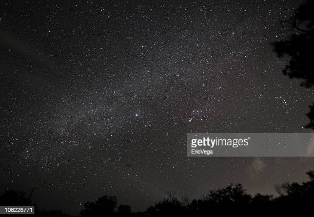 Looking Up at Stars in Night Sky