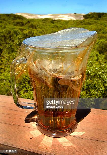 Lora Brody's sun tea brewing on her deck overlooking the dunes She has a cookbook out called 'The Cape Cod Table'