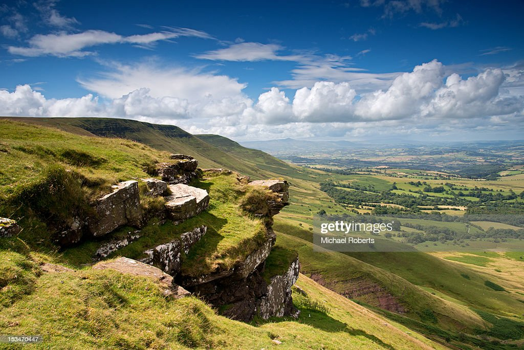 Lord Herefords knob : Stock Photo