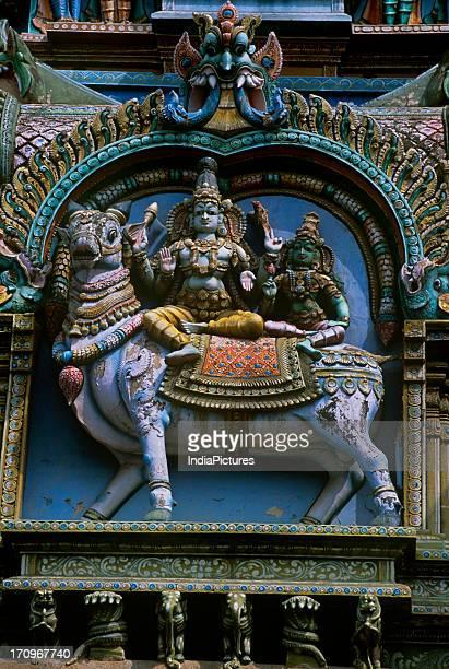 Lord Shiva Parvati Meenakshi Temple Madurai Tamil Nadu India