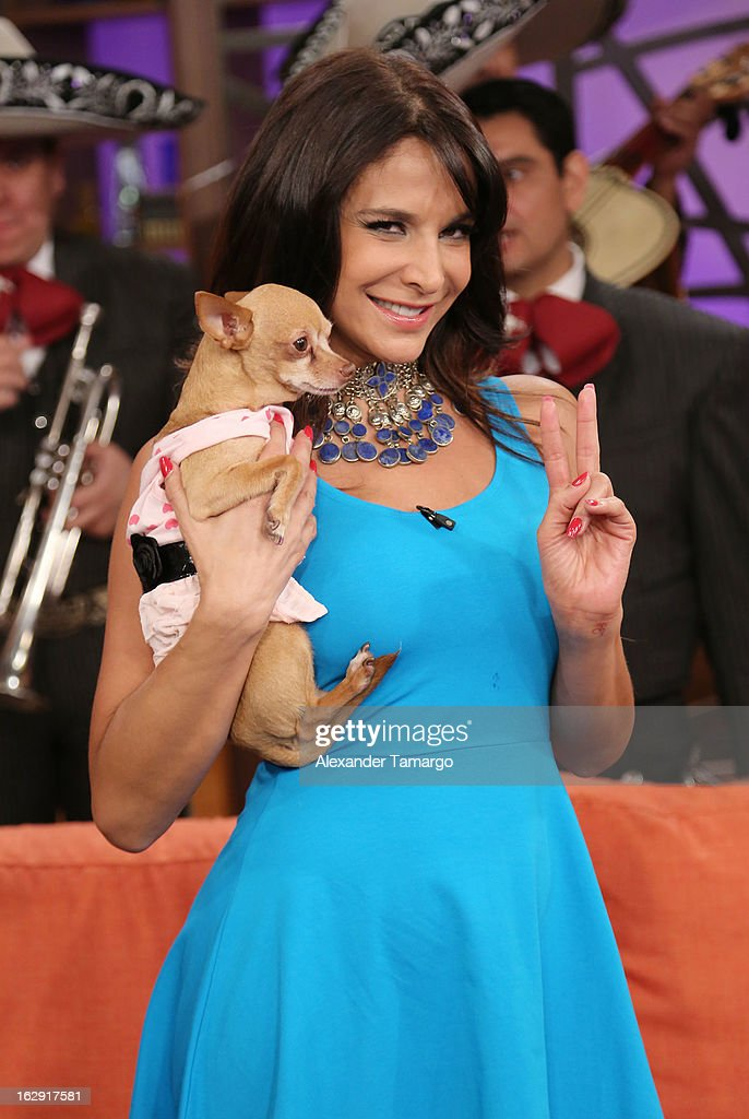 Lorena Rojas celebrates Univision's Tlnovelas cable network first anniversary on Despierta America at Univision Headquarters on March 1, 2013 in Miami, Florida.