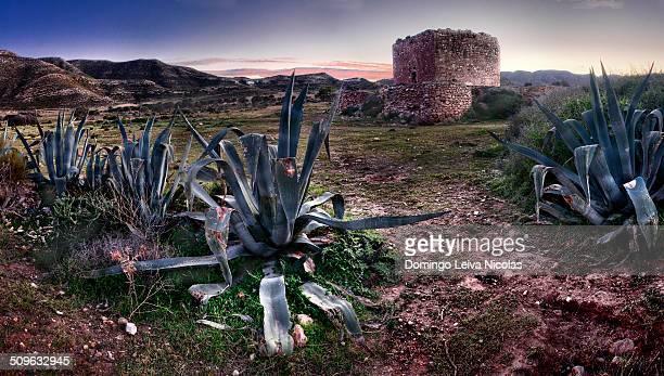 Los Alumbres Castle Cabo de Gata Natural Park Almeria Andalusia Spain