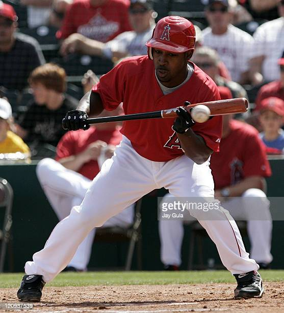 Los Angeles Angels Chone figgins pulls his bat back on an attempted bunt attempt in Cactus League action vs the Seattle Mariners at Tempe Diablo...