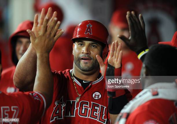 Los Angeles Angels of Anaheim designated hitter Albert Pujols in the dugout after scoring from second on a hit in the eighth inning of a game against...