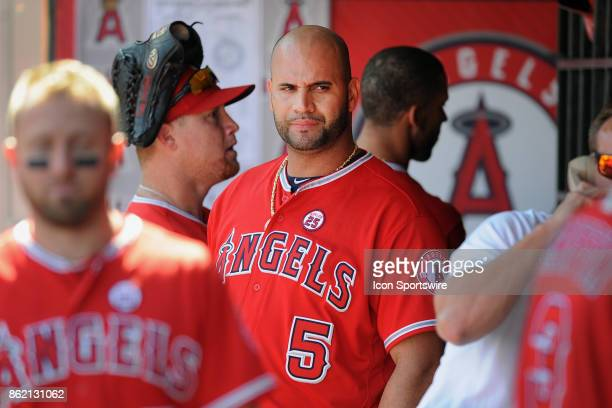 Los Angeles Angels of Anaheim designated hitter Albert Pujols in the dugout during a game against the Seattle Mariners on October 1 played at Angel...