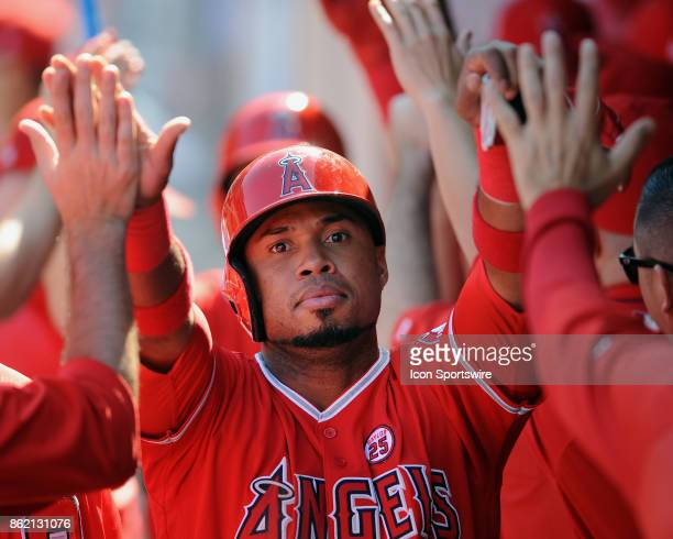 Los Angeles Angels of Anaheim infielder Luis Valbuena in the dugout after scoring in the seventh inning of a game against the Seattle Mariners on...