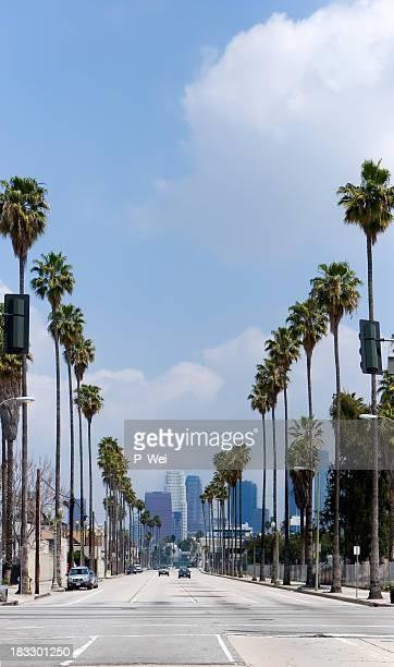 Los Angeles: Figuerola Corridor