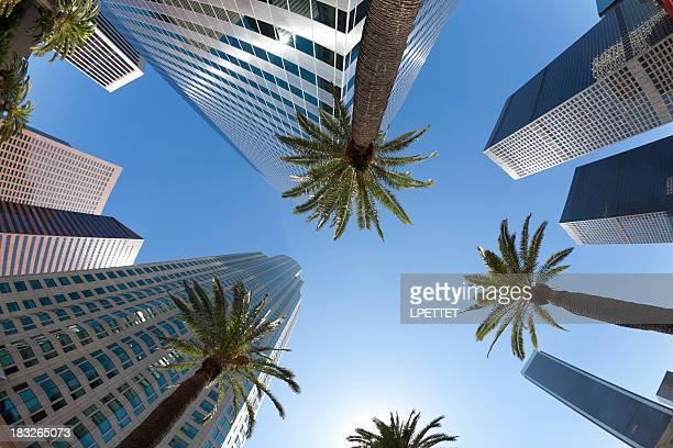 Los Angeles - Fish Eye View