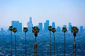 Beautiful Los Angeles Skyline with Palm Trees.