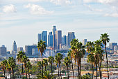 Los Angeles skyline on a partly cloudy day with a row of palm trees in the foreground.