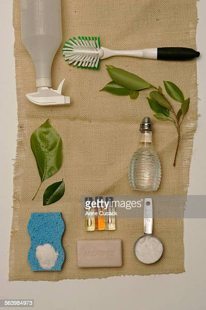 Los Angeles Studio Photo illustration on green cleaning products In small bottles bottles L to R lavender oil sweet orange oil and rosemary oil In...