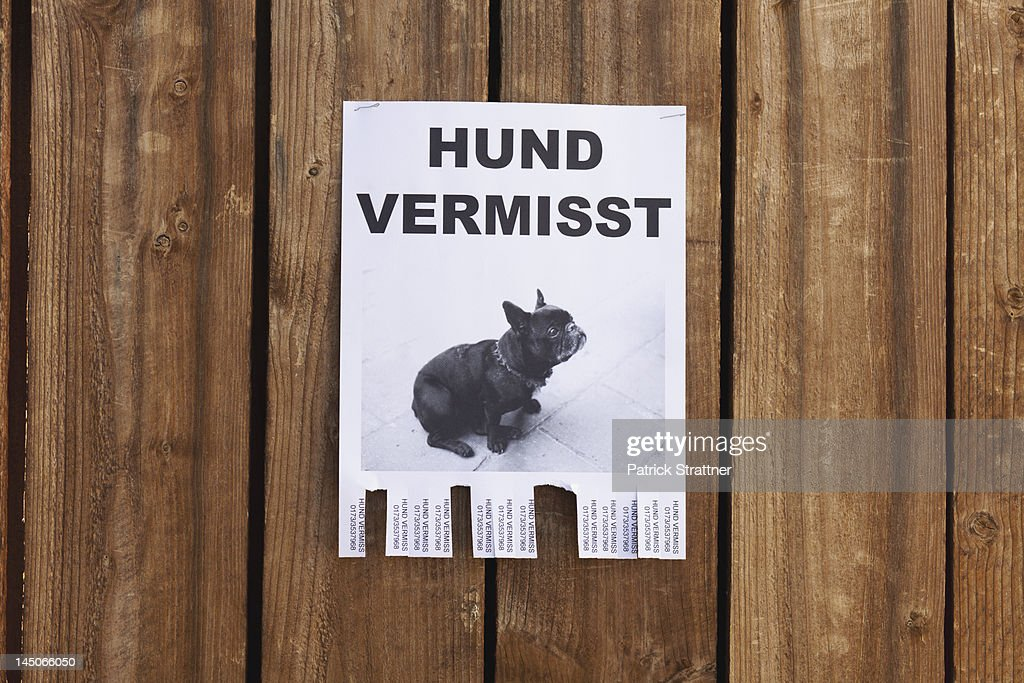A lost dog in flyer in German posted on a wooden fence