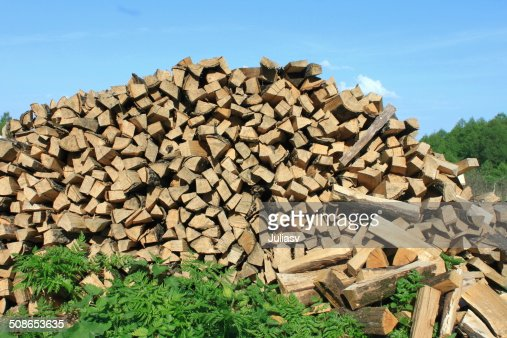 lot of firewood : Stock Photo