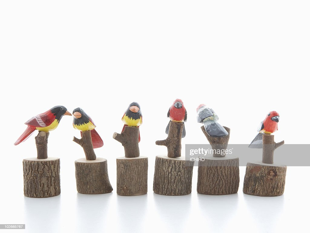 A lot of toy birds are twittering. : Stock Photo
