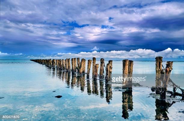 veel houten palen permanent in het water