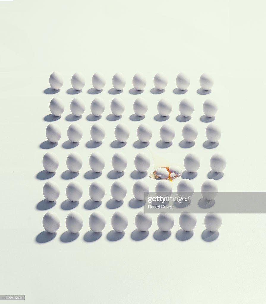 lots of eggs : Foto de stock